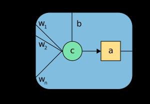 perceptron neuron
