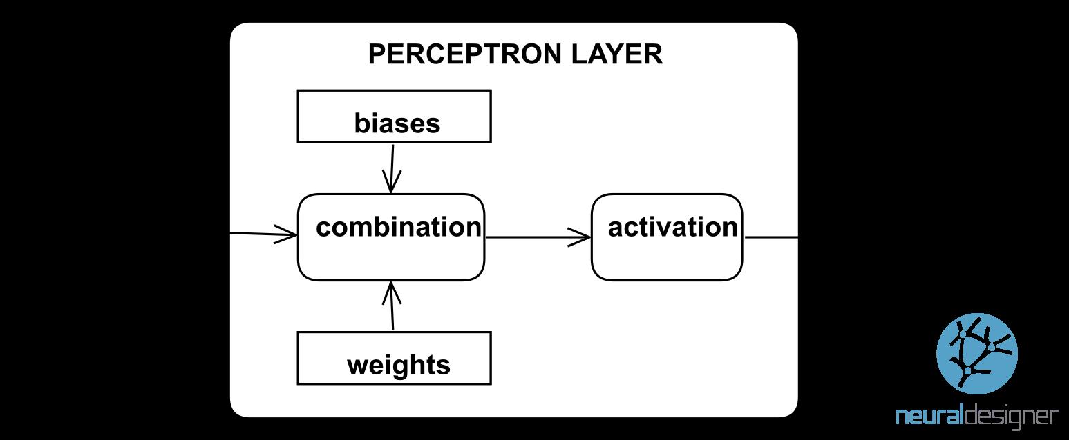 perceptron layer